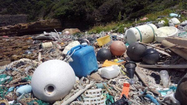 プラスチックごみ問題について①